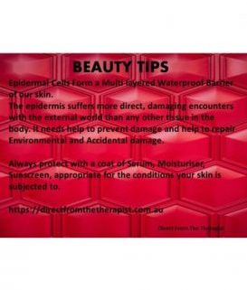 skin advice epidermis